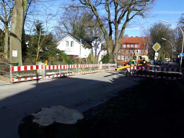 Reinbeker Weg 20170322 6